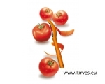 Victorinox universaalkoorija oranž