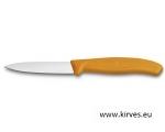 Victorinox'i koorimisnuga  8 cm